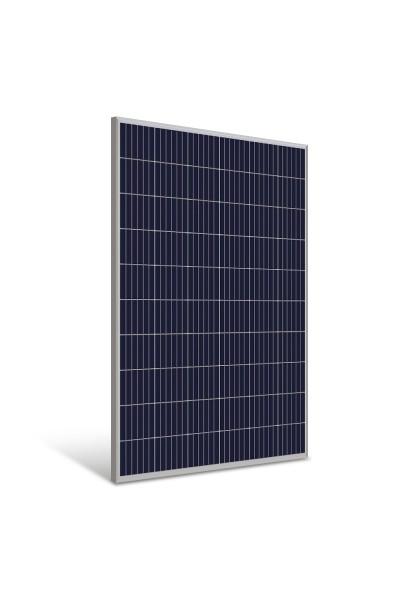 Painel Fotovoltaico 280W - Yingli - NeoSolar - foto 1