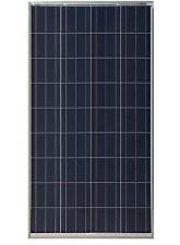 Painel Solar Fotovoltaico 150Wp - Yingli Solar YL150P-17b- Yingli Solar YL150P-17b