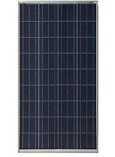 Painel Solar Fotovoltaico 150W - Risen RSM36-6-150P
