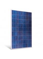 Painel Solar Fotovoltaico 160W - Sinosola SA160-36P