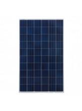 Painel Solar Fotovoltaico Sinosola SA275-60P (275Wp)