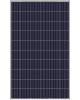 Placa Solar Yingli 270Wp - NeoSolar - foto 1
